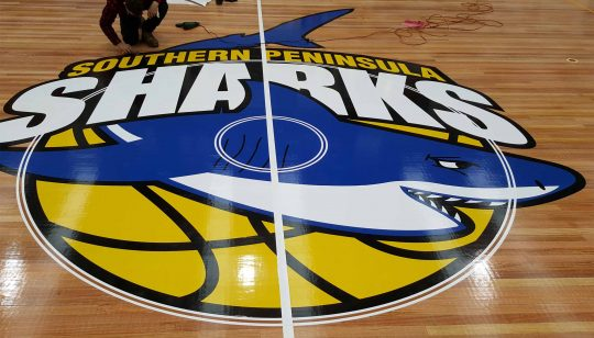 Basketball Floor Graphic 1