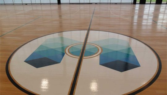Basketball Floor Graphic 2