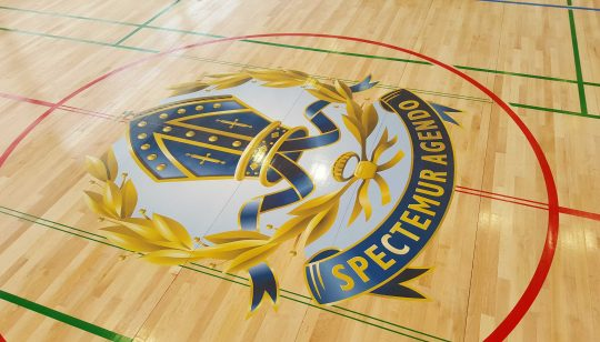 Basketball Floor Graphic 3